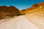 Road in Desert — Stock Photo