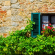 Italian Window — Stock Photo #39515807
