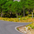 Road in Spain — Foto de stock #41120059
