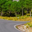 Foto Stock: Road in Spain