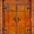 Door — Stock Photo #41598095
