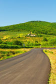 Road in Tuscany — Stock Photo