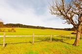 Pastures  — Stock Photo