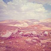 Palestine — Stock Photo