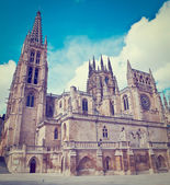 Gothic Cathedral — Stock Photo