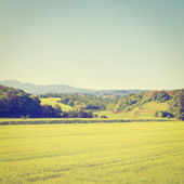 Fields and Mountains  — Stock Photo