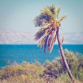 Galilee Sea — Stock Photo