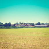 Fields — Stock Photo