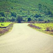Asphalt Road — Stock Photo