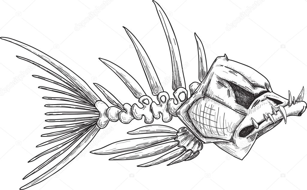 Fish Skeleton Drawing Sketch of Evil Skeleton Fish