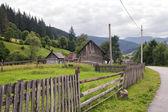 Carpathian village — Stock Photo