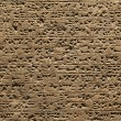 Stock Photo: Cuneiform background