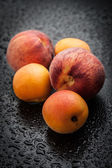 Apricots and peaches — Stock Photo