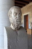 глава геродот в музее — Стоковое фото