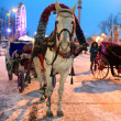 Ornamented horse drawn carriage — Stock Photo
