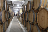 Interior of winery — Stock Photo
