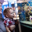 Family watching fishes — Stock Photo