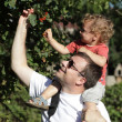 Father with child at garden — Stock Photo