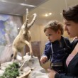 Stock Photo: Mother with son at zoological museum