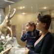 Stock Photo: Family at zoological museum