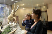 Family at zoological museum — Stock Photo