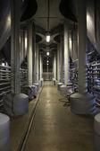Interior of fermentation department — Stock Photo