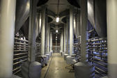 Fermentation department of brewery — Stock Photo