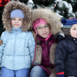 Children with Christmas tree — Stock Photo #37065689