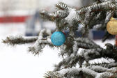 Ball on Christmas tree — 图库照片
