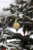 Golden ball on Christmas tree — 图库照片