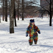 Stock Photo: Kid walking in park