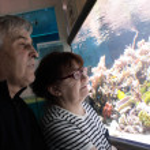 Senior couple watching fishes — Stock Photo