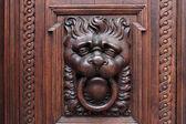 Lion on a wooden door — Stock Photo