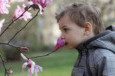 Chico que huele una flor — Foto de Stock