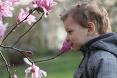 Happy boy smelling a flower — Stock Photo