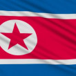 North Korean flag, with real structure of a fabric — Stock Video #12539502