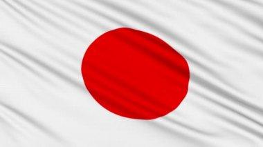 Japonská vlajka, skutečnou strukturu tkaniny — Stock video