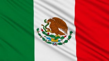 Mexican flag, with real structure of a fabric — Stock Video