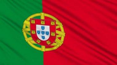 葡萄牙国旗,与真正的组织结构的织物 — 图库视频影像