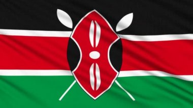 Kenya flag, with real structure of a fabric — Stock Video