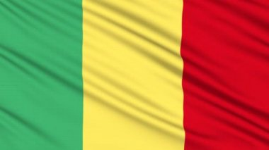 Mali flag, with real structure of a fabric — Stock Video #12559487