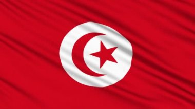 Tunisia flag, with real structure of a fabric — Stock Video