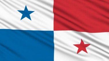 Panama flag, with real structure of a fabric — Stock Video
