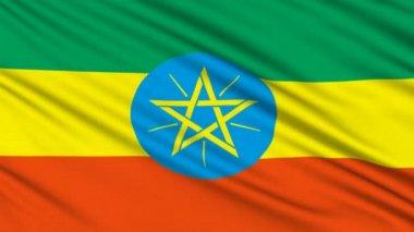 Flaga etiopii, z prawdziwą strukturę materiału — Wideo stockowe