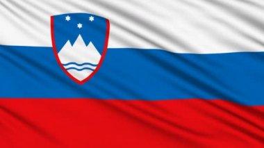 Slowenische Flagge, mit realen Struktur des Stoffes — Stockvideo