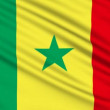 Senegalese flag, with real structure of a fabric — Stock Video