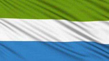 Bandera de sierra leona, con la estructura real de una tela — Vídeo de Stock
