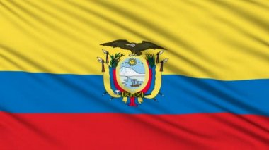 Ecuadorian Flag, with real structure of a fabric — Stock Video