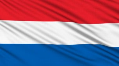 Dutch Flag, with real structure of a fabric — Stock Video