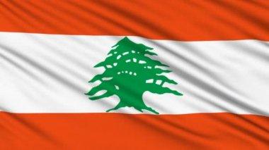 Libanonská vlajka, skutečnou strukturu tkaniny — Stock video